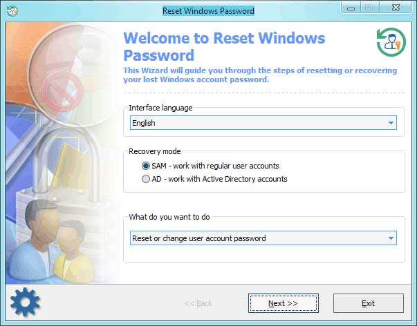 Reset Windows Password Sample