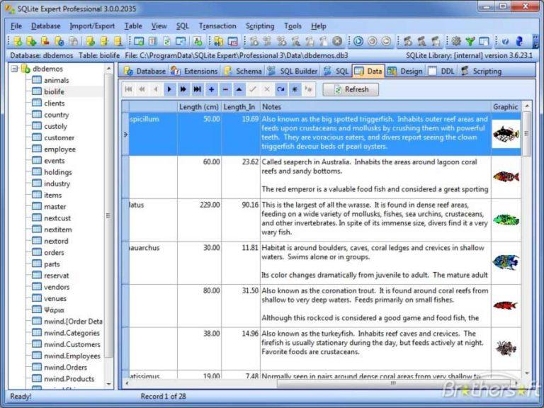 SQLite Expert1 768x576 1