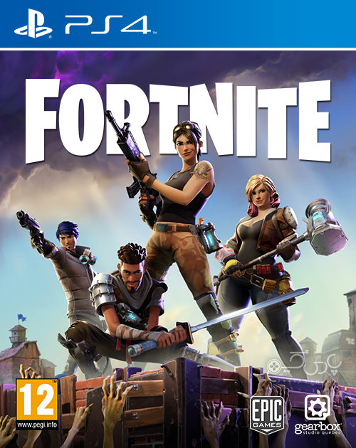 Fortnite PS4 Game