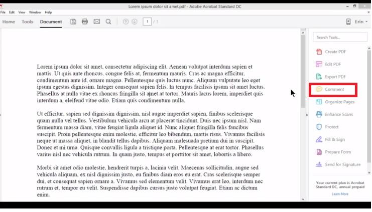 comment pdf 8