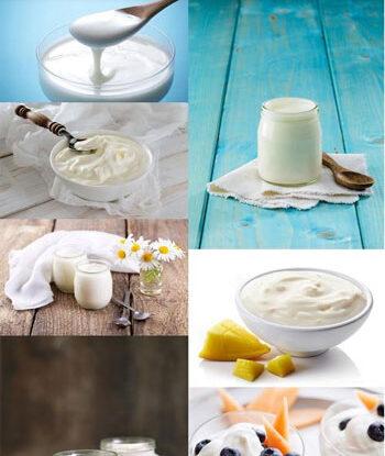Yogurt Shutter