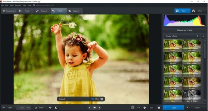 AMS Software PhotoWorks 10.0